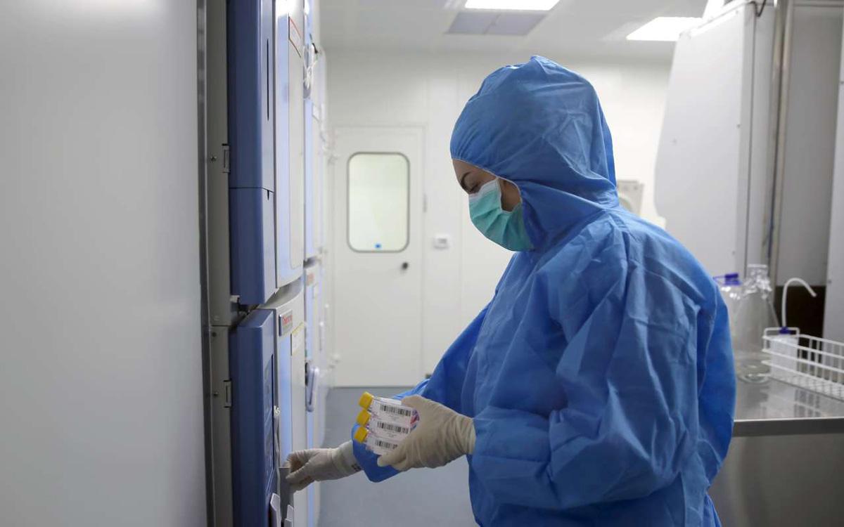 تولید انبوه 14 سلول انسانی در دستور کار قرار گرفت