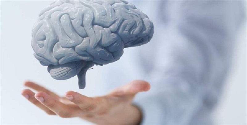 ارتباط بین قد و هوش ناشی از چیست؟