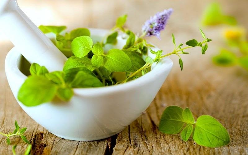10 گیاه مفیدی که سلامت تیروئیدتان را ضمانت می کند