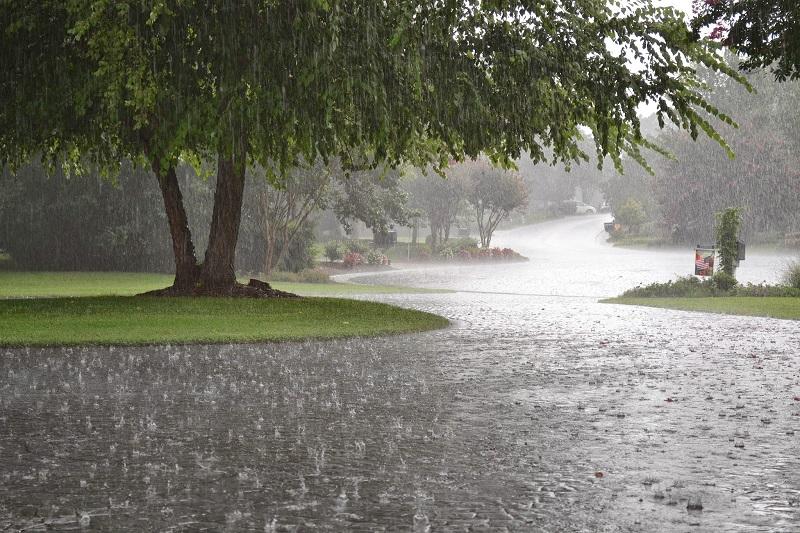 بارش باران شدید در هفت استان