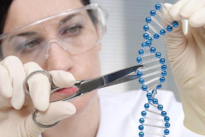 کاهش ۵۰ درصدی بیماریهای ژنتیکی در برنامه ۵ ساله وزارت بهداشت