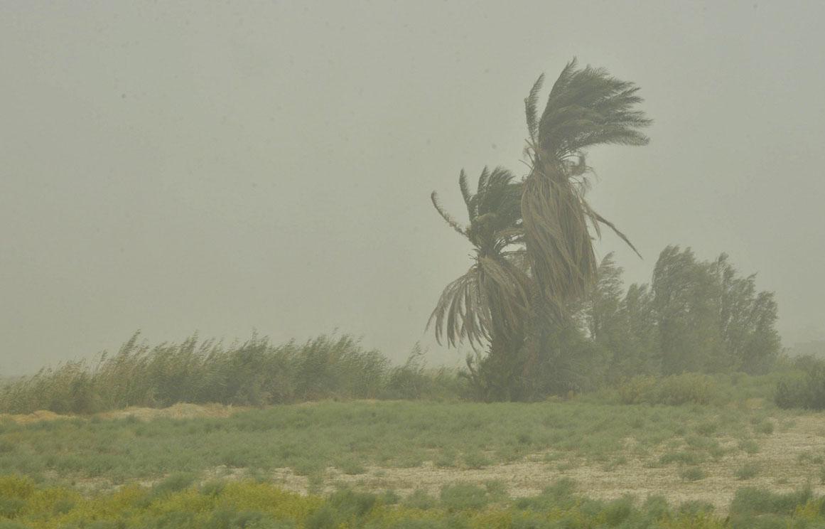 وزش باد شدید در نیمه شرقی کشور طی امروز و فردا
