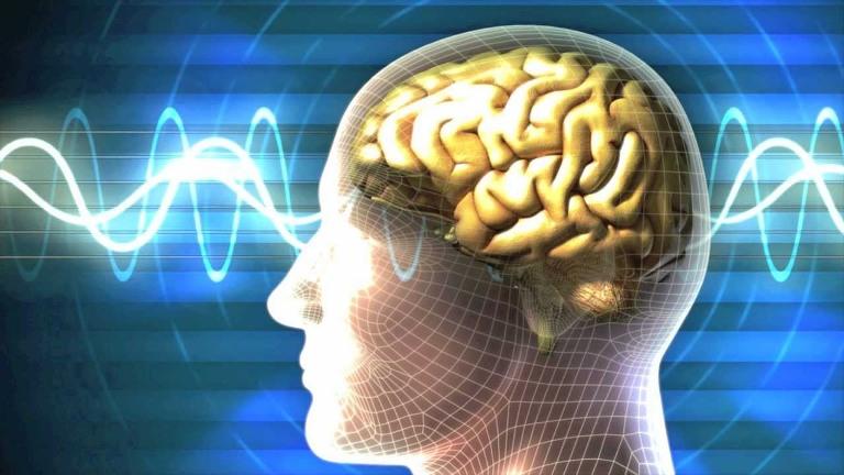 اختلال طیف اتیسم و زوال عقل نیازمند مداخله توانبخشی شناختی