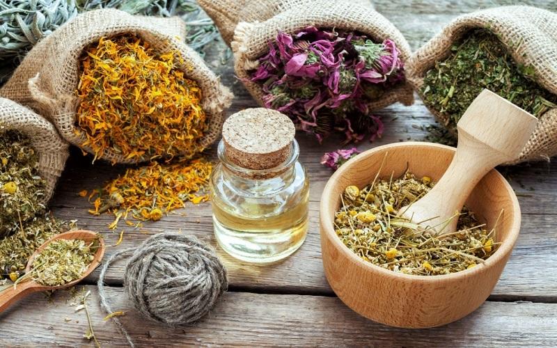 استان برتر کشور در تنوع گیاهان دارویی