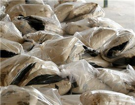 کشف بیش از 13 تن موادمخدر در کشور طی هفته اخیر