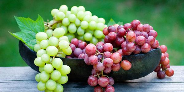 محدودیتهای طب سنتی برای مصرف انگور
