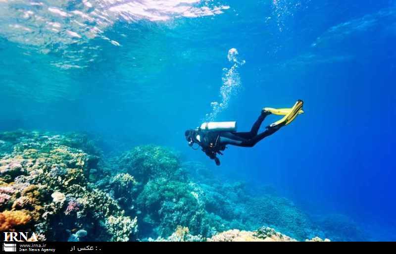 مطالعه آلودگی دریاها اولویت پژوهشگاه اقیانوس شناسی است