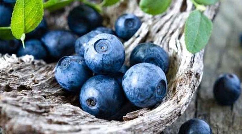 درمان عفونت های معده و روده با این میوه