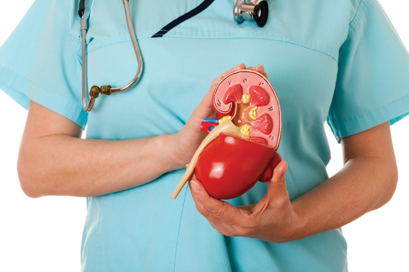 بیماری آدیسون یا نارسایی غدد فوق کلیوی چیست؟