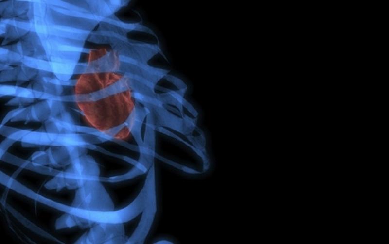 تهیه اولین تصاویر رنگی سه بعدی از بدن انسان