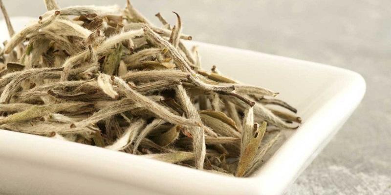 از مزایای چای سفید بدانید