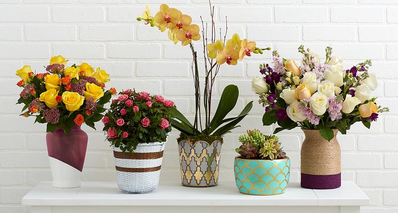 چگونه گلدان های رنگین کمانی درست کنیم؟
