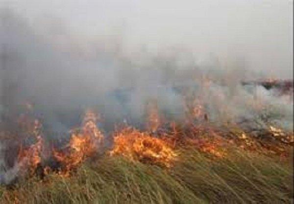 هویزه و رفیع در دود آتش هورالعظیم گرفتار شده اند