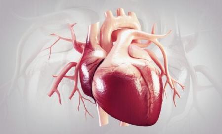 وضعیت تامین داروهای قلب و عروق در شرایط تحریم کشور