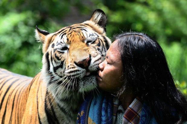 خطرناکترین بوسه جهان! + عکس