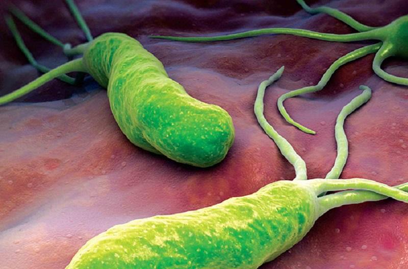 این میکروب را در معده جدی بگیرید
