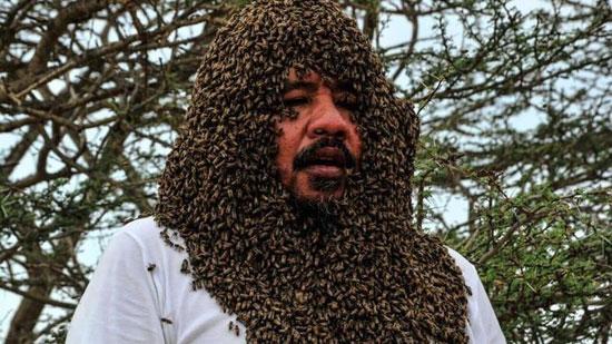 دفن شدن مرد سعودی زیر ده ها کیلوگرم زنبور+ عکس