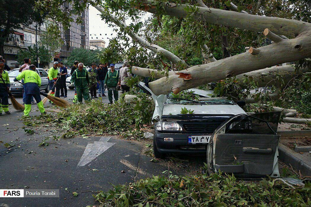 خسارات طوفان دیروز تهران + عکس