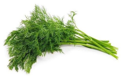 ناکاوت «پوکی استخوان» با این گیاه خوش عطر