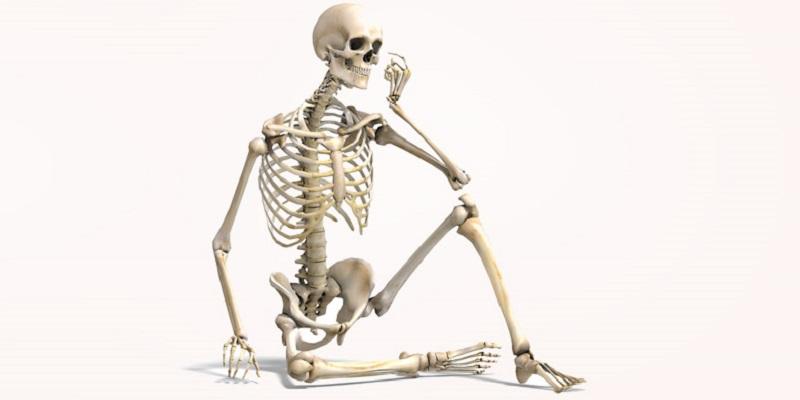 14 حقیقت شگفت انگیز درباره استخوان