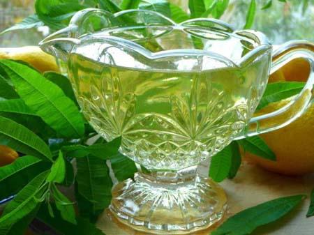 چای های  «ضد سرطان»  را بشناسید