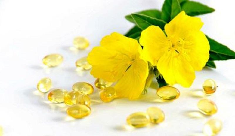 خواص شگفت انگیز و ضد التهابی روغن گل مغربی (گل پامچال)