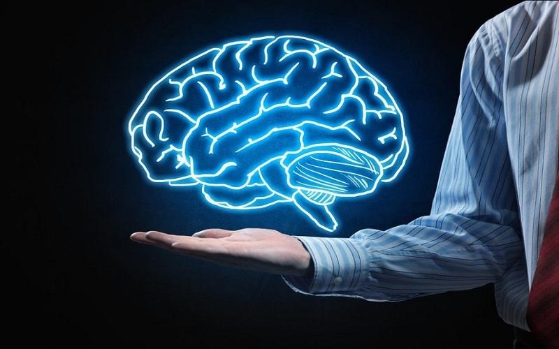 کشف ماده ای که تاثیر مهمی در سلامت مغز دارد