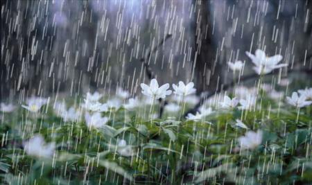بارندگی شدید در خوزستان و ۷ استان دیگر