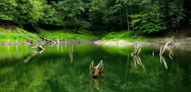 این دریاچه زیبا را زلزله پدید آورد +عکس