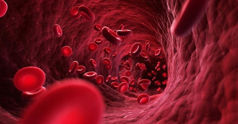 چه کنیم تا گردش خونمان بهتر شود؟