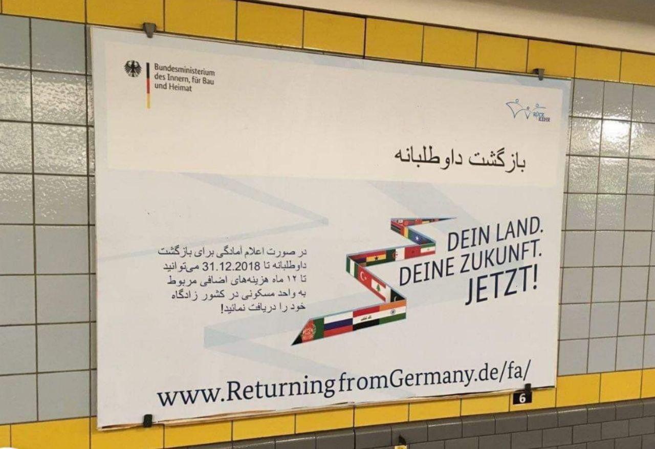 پول یک سالتان را هم میدهیم، برگردید کشورتان! + عکس