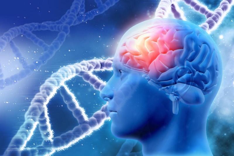 آیا ژنتیک در احتمال ابتلا به آلزایمر نقش دارد؟