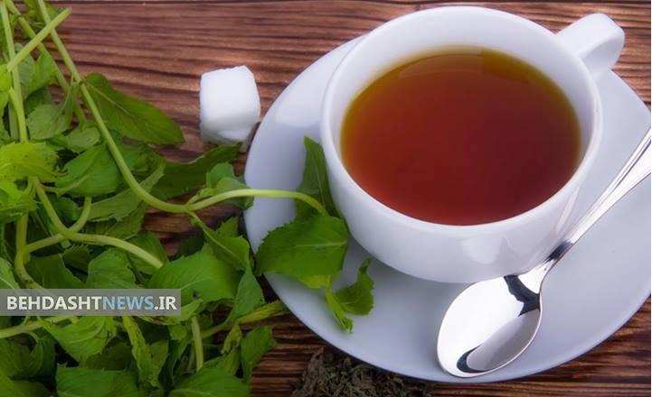 درد معده را با این گیاهان دارویی درمان کنید