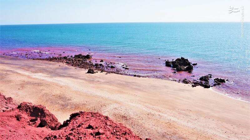 ساحلی به رنگ خون در ایران! + عکس
