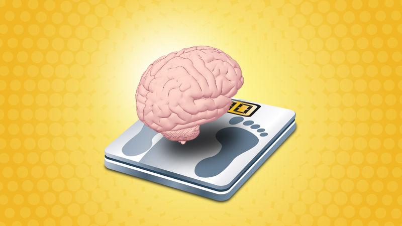 اگر می خواهید باهوش باشید وزن کم کنید