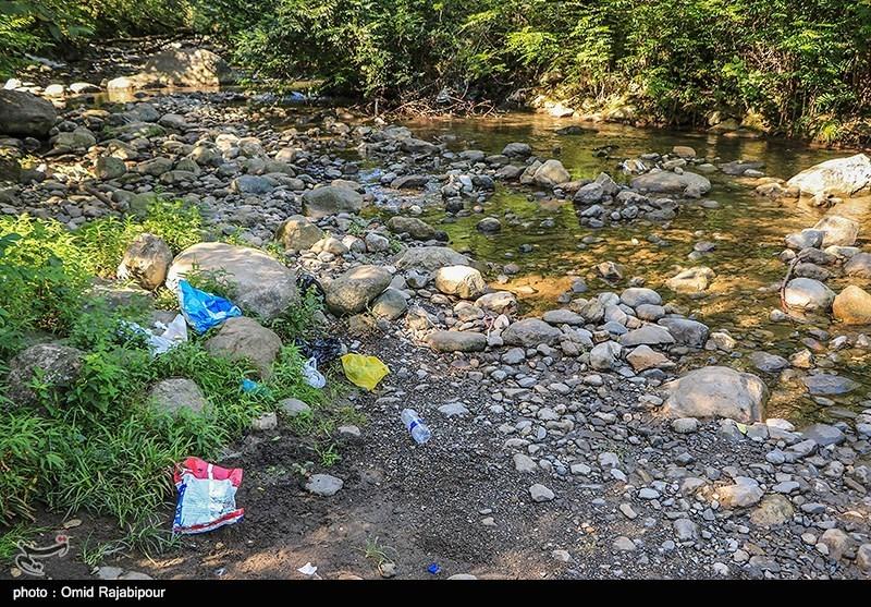 نامهربانی مسافران تابستانی با طبیعت گیلان! + عکس