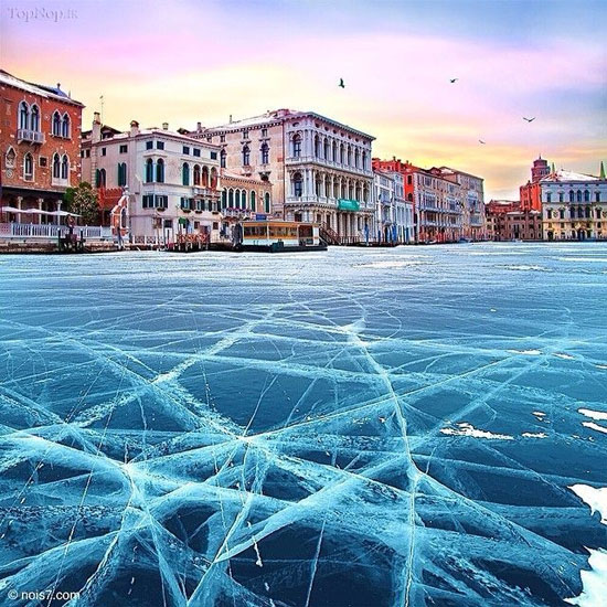 ونیز بعد از یخبندان + عکس