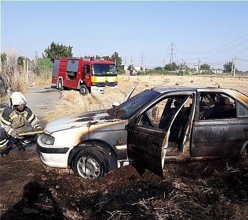 آتشسوزی گندمزار منجر به آتش گرفتن پژوپارس شد + عکس
