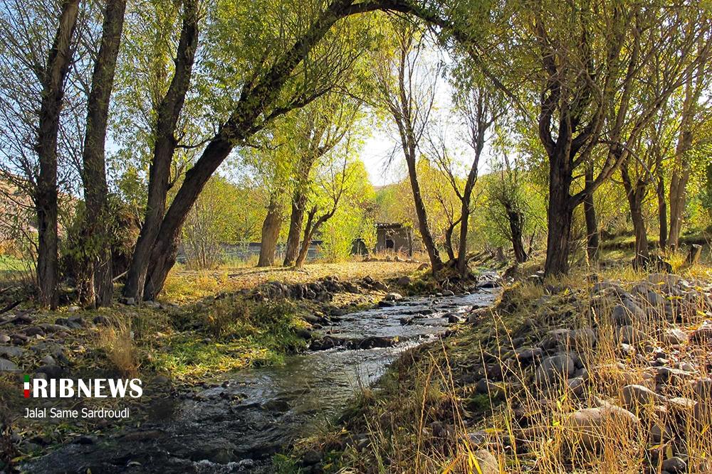 397237843298 - پاییز خیره کننده در باغ های تبریز+عکس