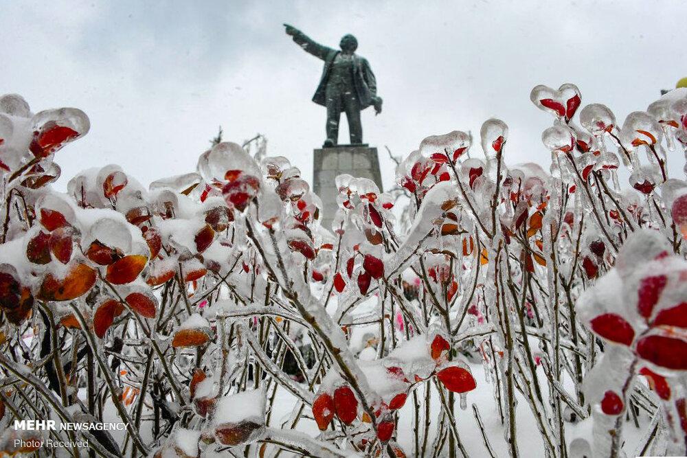 2385928348 - یخ زدگی سراسری در شرق روسیه+عکس
