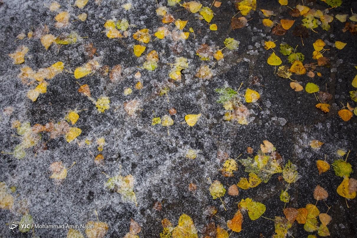 40011 - بارش اولین برف امسال در همدان+عکس