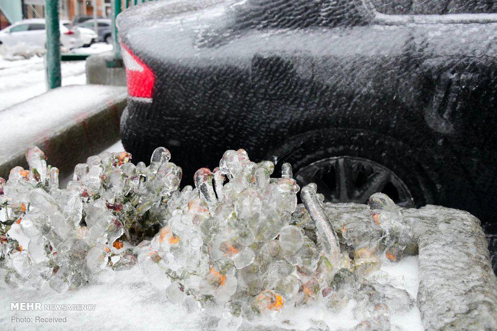 تصاویری عجیب از یخ زدگی در شرق روسیه! + عکس