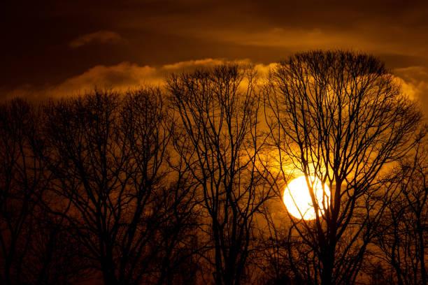 طلوع زیبای آفتاب زمستانی در هلند + عکس