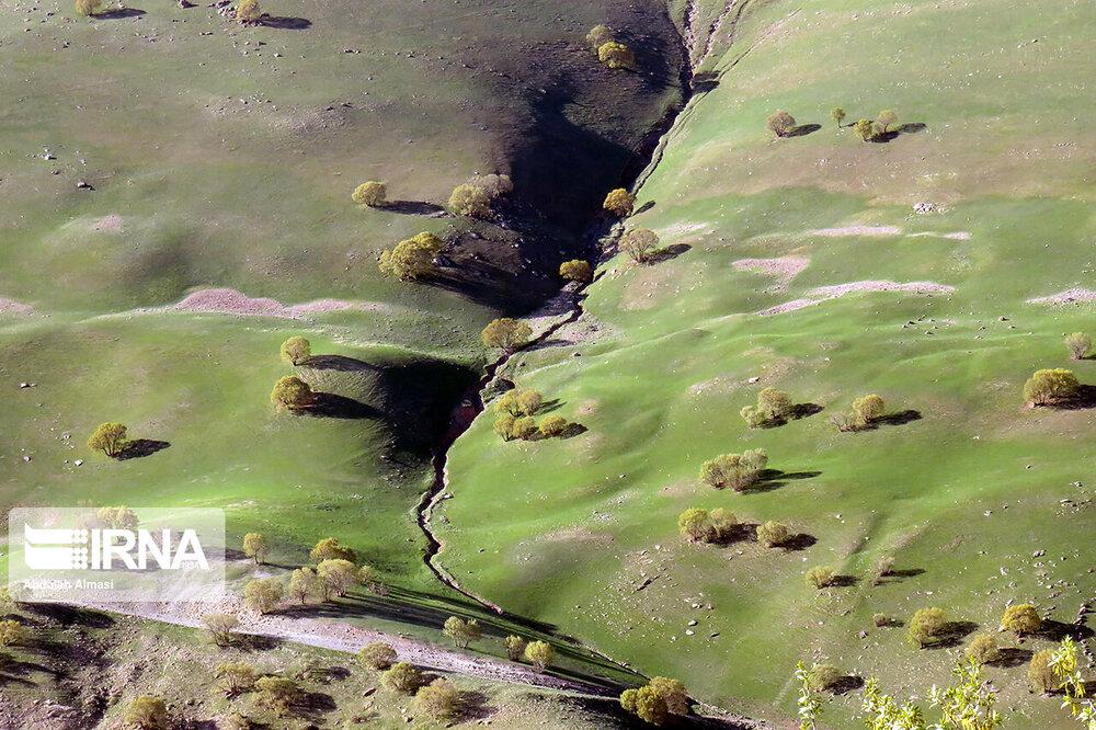 قابهای رویایی از جنگلهای سحرانگیز شهرستان هرسین