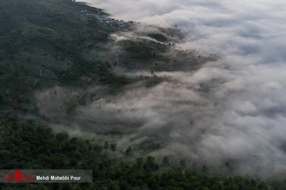 46494bce 8815 44ec 8383 7d8184c207eb - تصاویری متفاوت از بهشت گمشده در مازندران